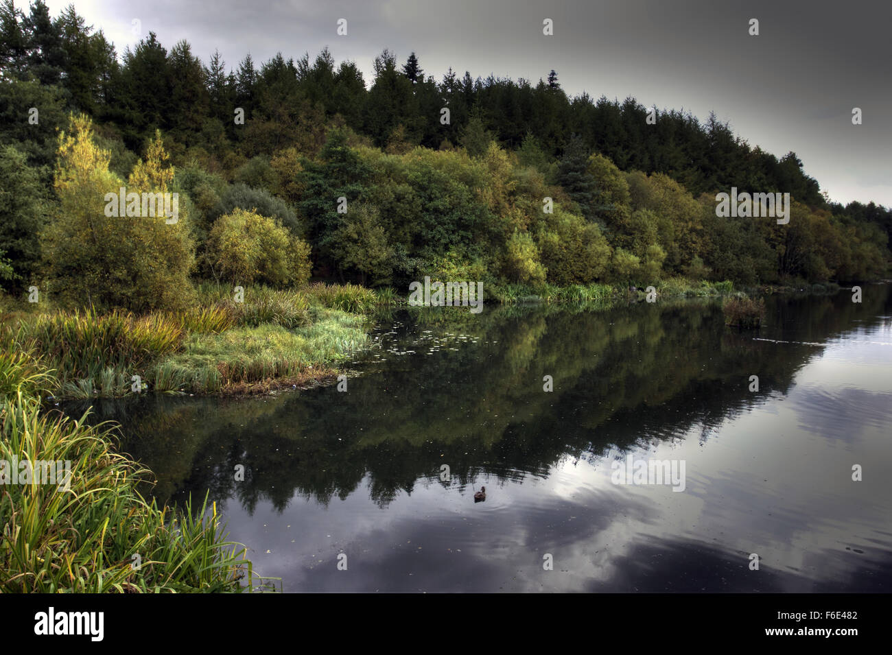 Deans (AKA Eliburn) Reservoir is a beautiful stretch of water. - Stock Image