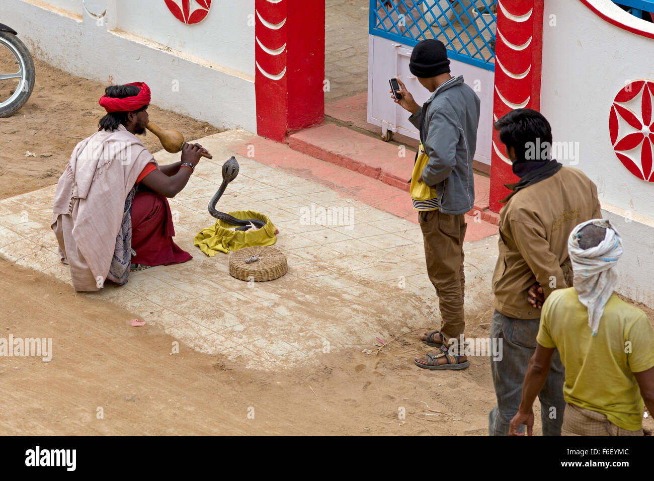 snake charmer going from door to door to collect money with his cobra - Stock Image