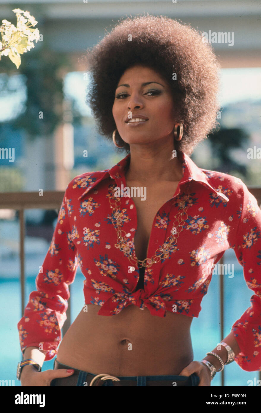 Forum on this topic: Ellen Parker (actress), pam-grier/