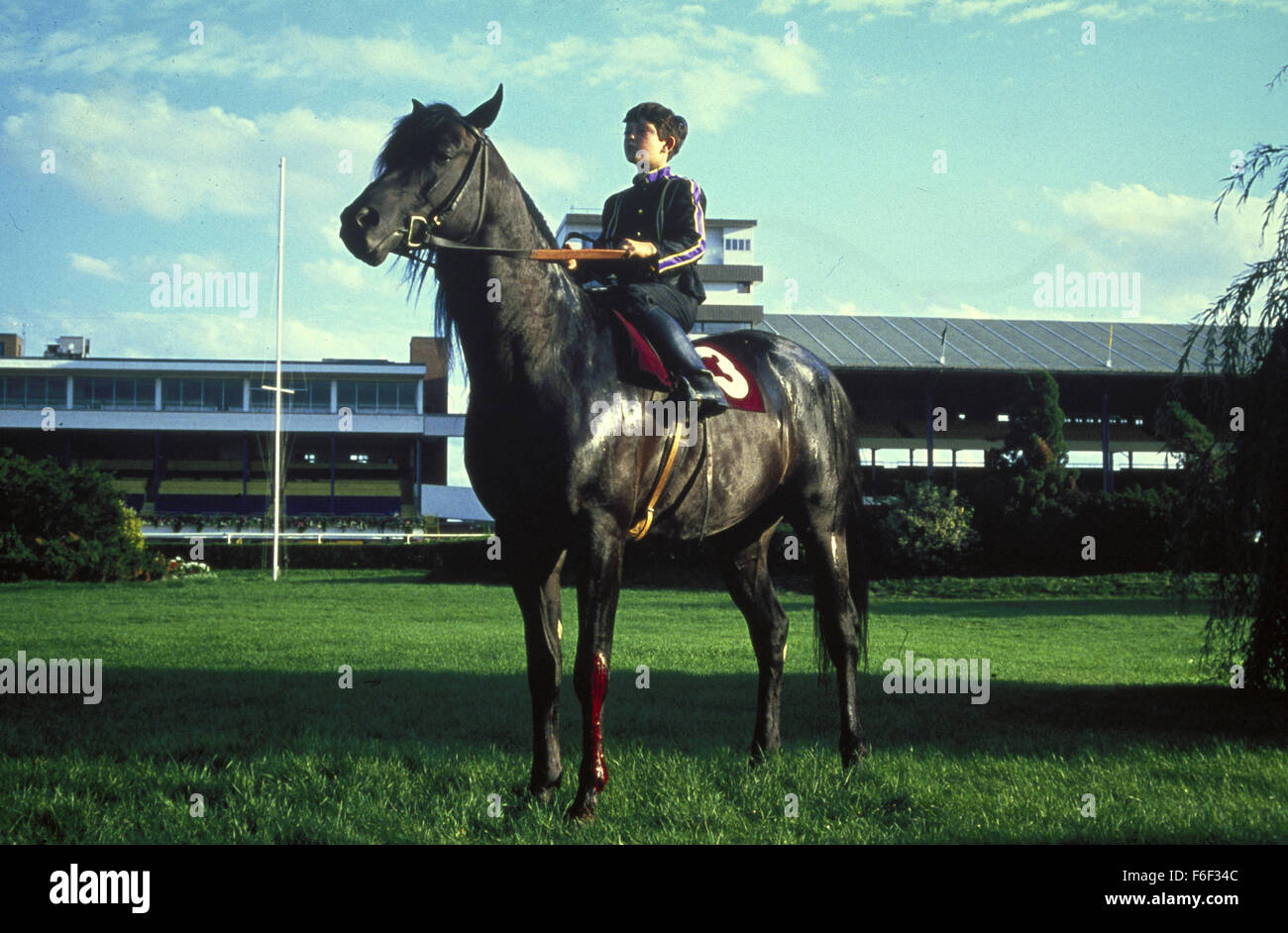 RELEASE DATE: October 17, 1979. MOVIE TITLE: The Black Stallion. STUDIO: Omni Zoetrope. PLOT: While traveling with - Stock Image