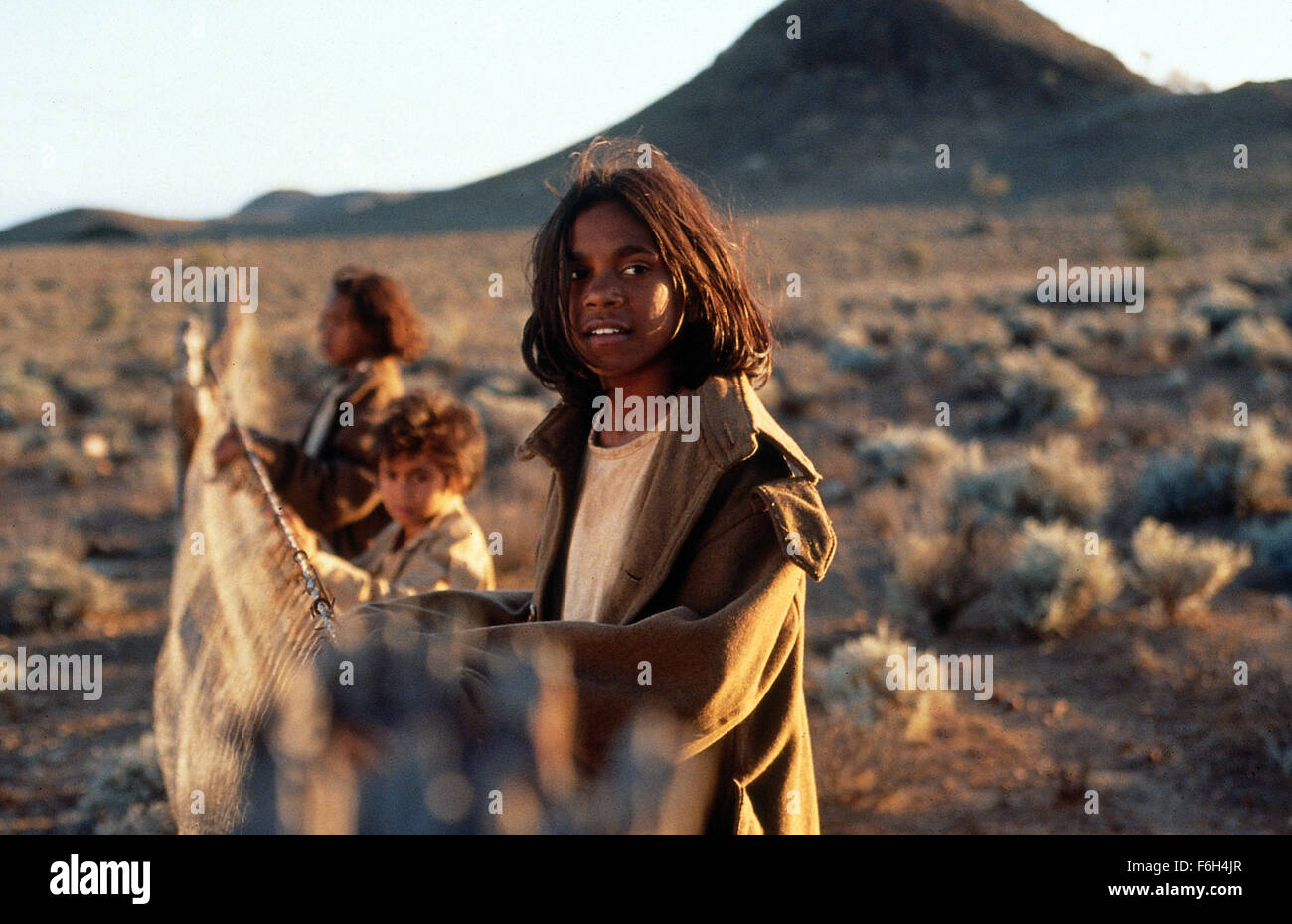 rabbit proof fence movie download free