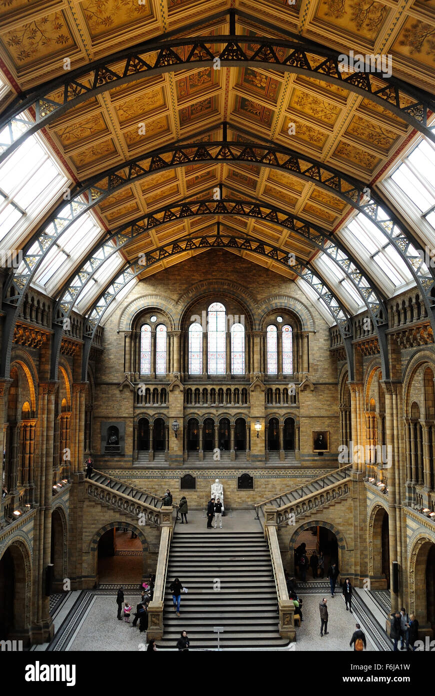 The Hintze Hall in the Natural History Museum, London England UK - Stock Image