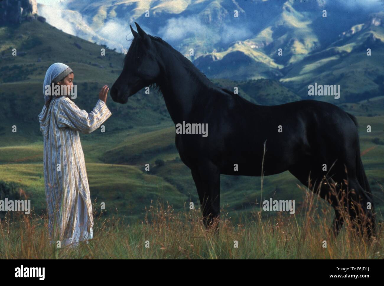 Jun 09, 2003; Hollywood, CA, USA; BIANA TAMIMI as Neera in the family, adventure, drama ''The Young Black - Stock Image