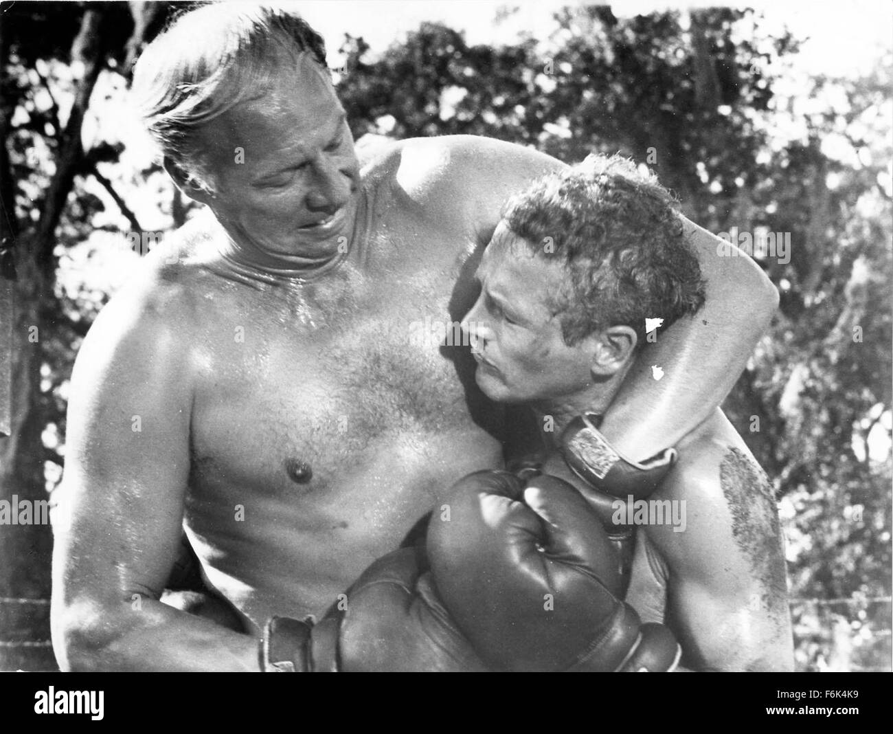 RELEASE DATE: November 1, 1967. MOVIE TITLE: Cool Hand Luke. STUDIO: Jalem Productions. PLOT: Luke Jackson is a - Stock Image