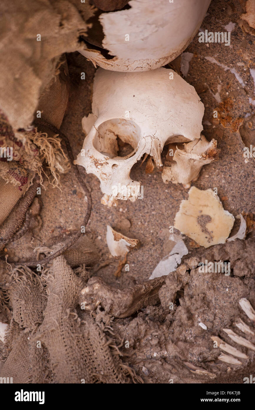 [Image: shattered-human-skull-and-other-assorted...F6K7JB.jpg]