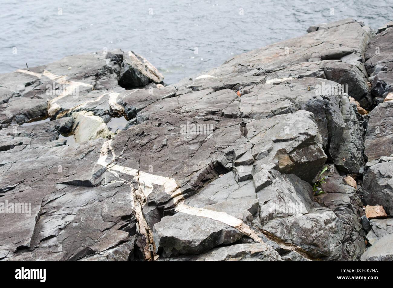 A thick quartz intrusion runs through coastal outcroppings of Ellsworth Schist on Mount Desert Island, Maine. - Stock Image