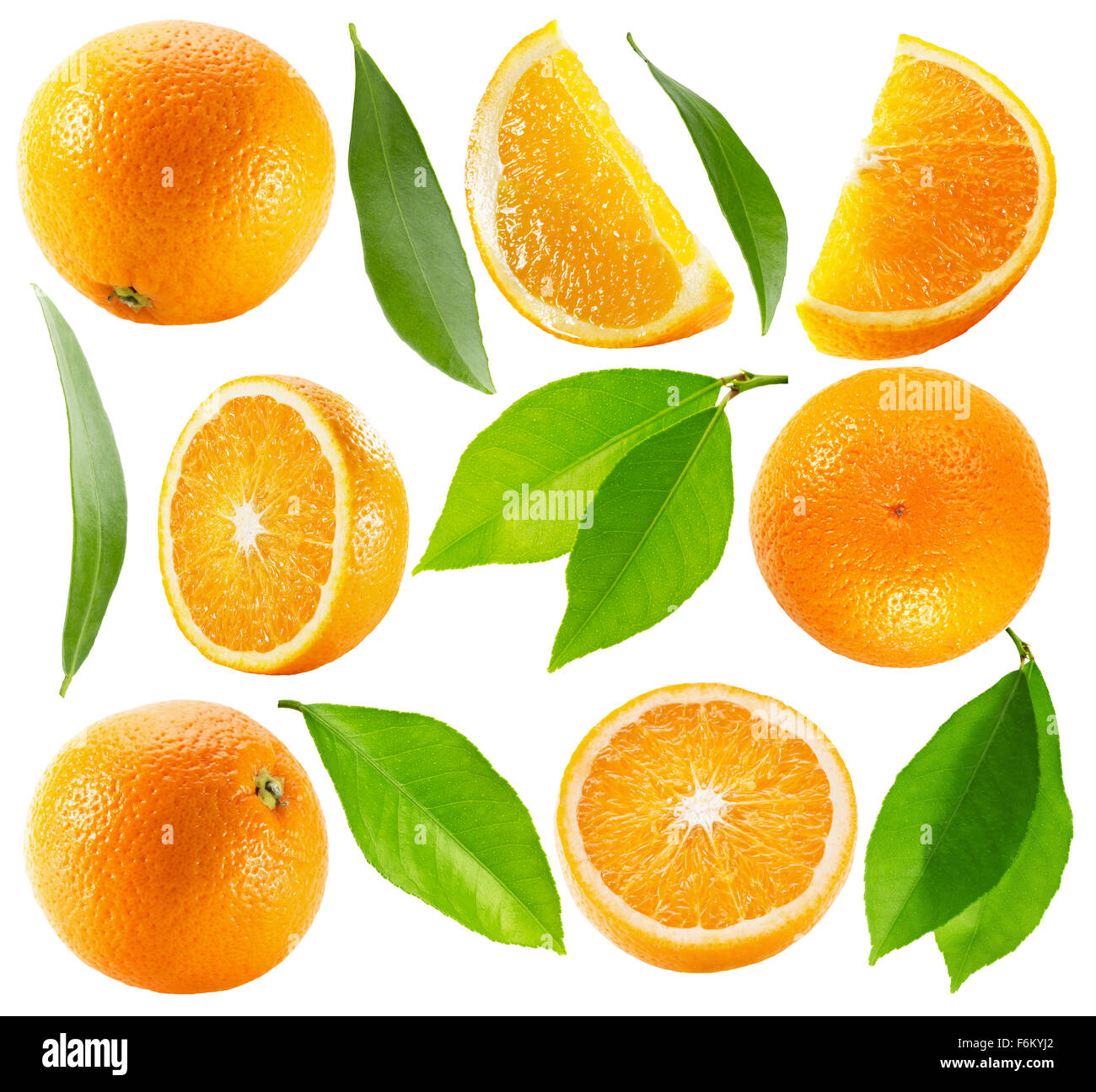 collection of oranges with leaves isolated on the white background. - Stock Image
