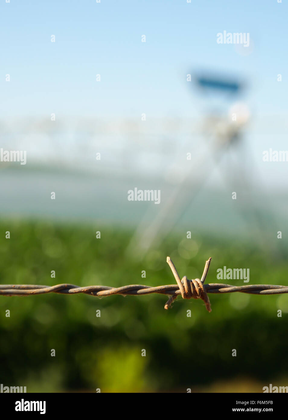 Close up of barbed wire fence - Stock Image