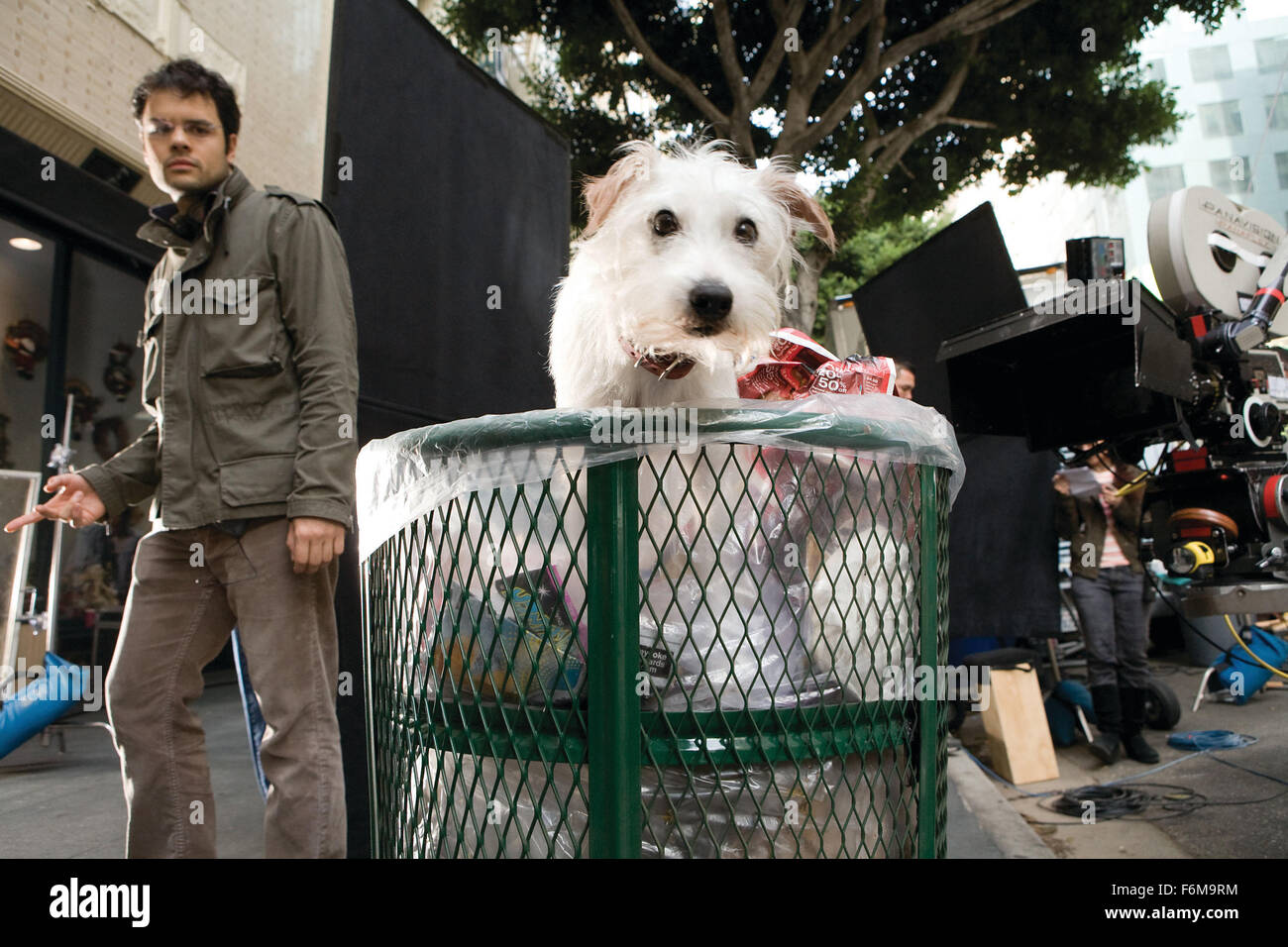 RELEASE DATE: 16 January 2009  MOVIE TITLE: Hotel for Dogs