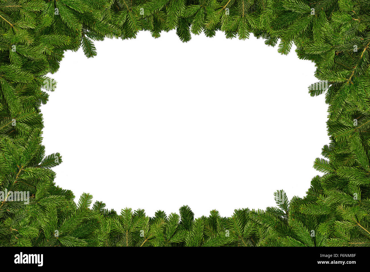 fir branches frame on white background - Stock Image