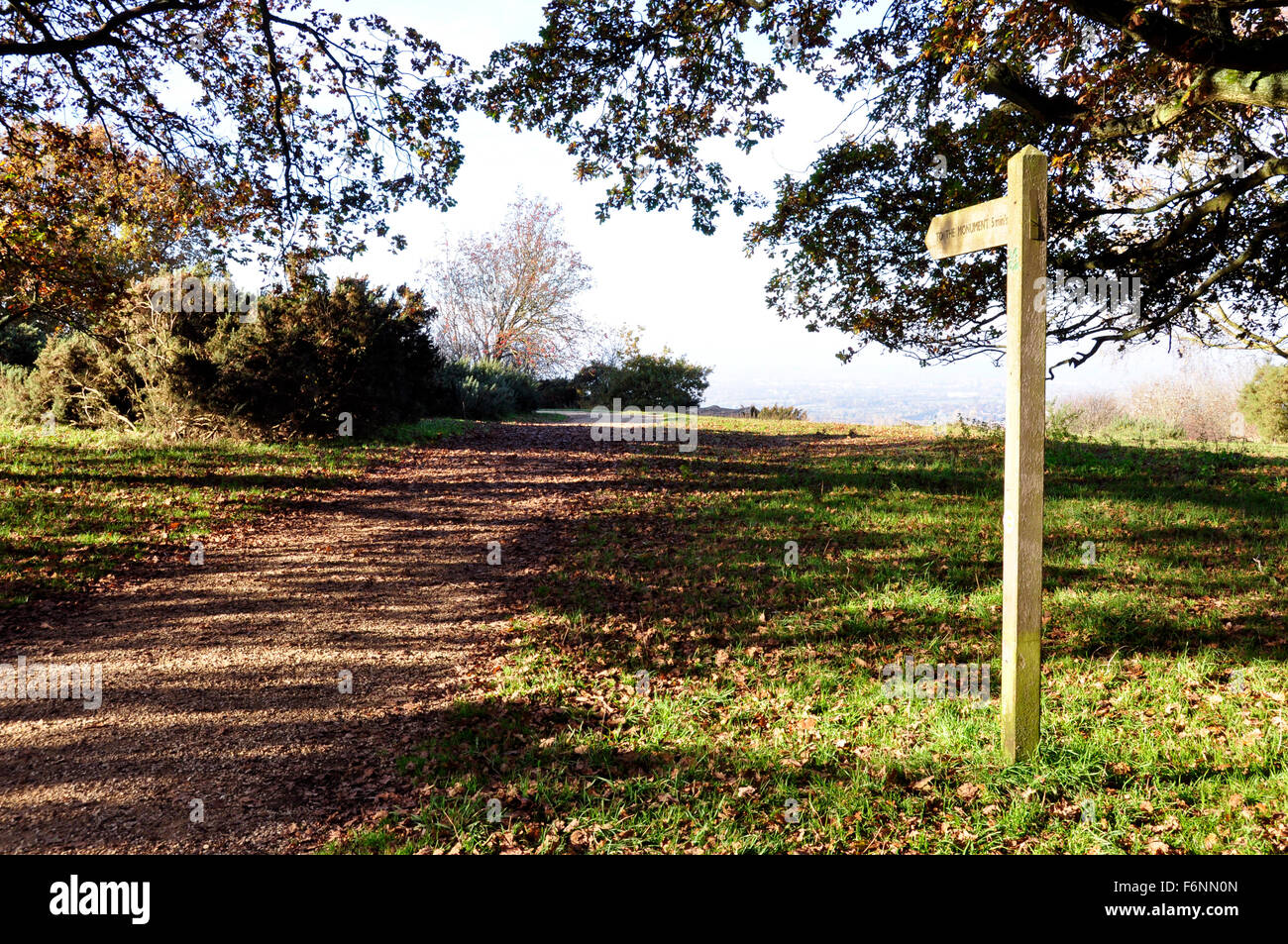 Chiltern Hills - on Beacon Hill - footpath - finger post - to view over Aylesbury Plain - sunlight and shadows  - Stock Image