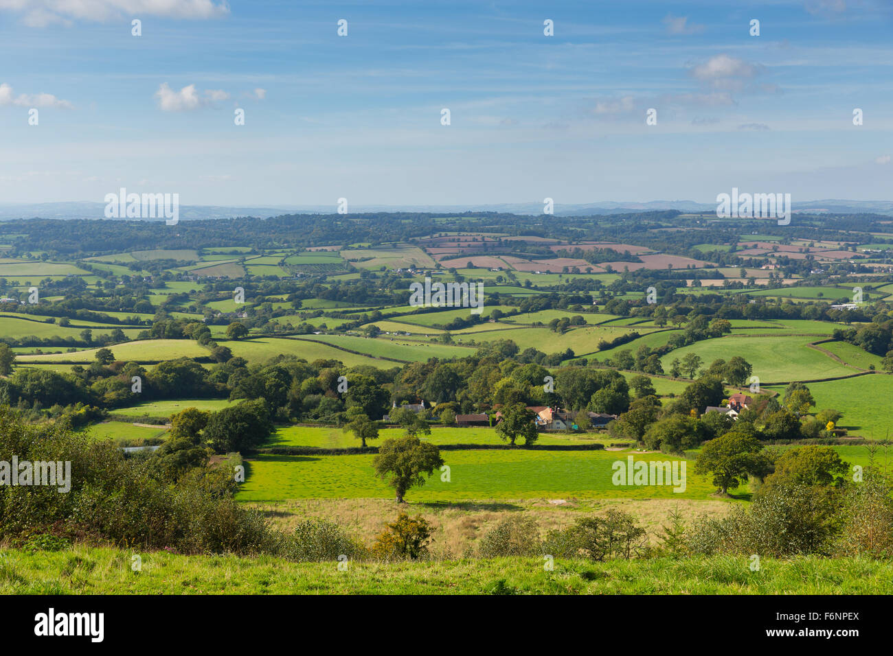 Blackdown Hills east Devon countryside view from East Hill near Ottery St Mary an Area of Outstanding Natural Beauty - Stock Image