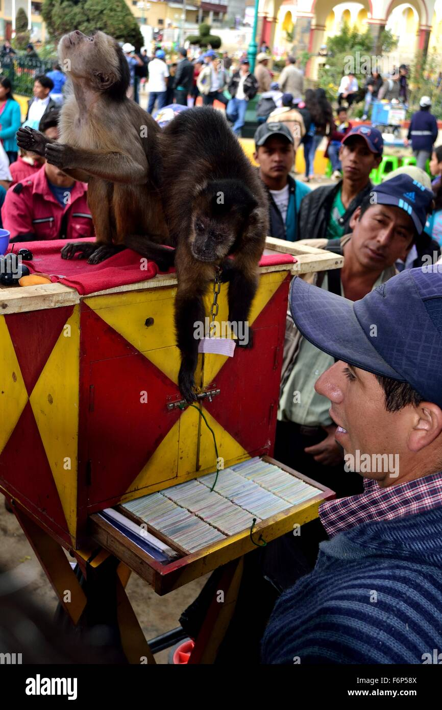 Monkey game - Plaza de Armas in AYABACA . Department of Piura .PERU - Stock Image