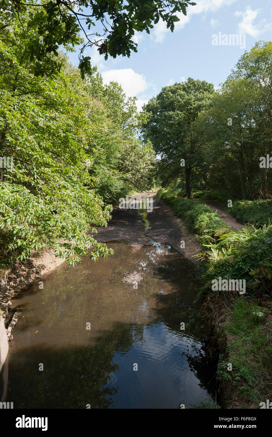 Basingstoke Canal During the 2009 Drought -4 - Stock Image