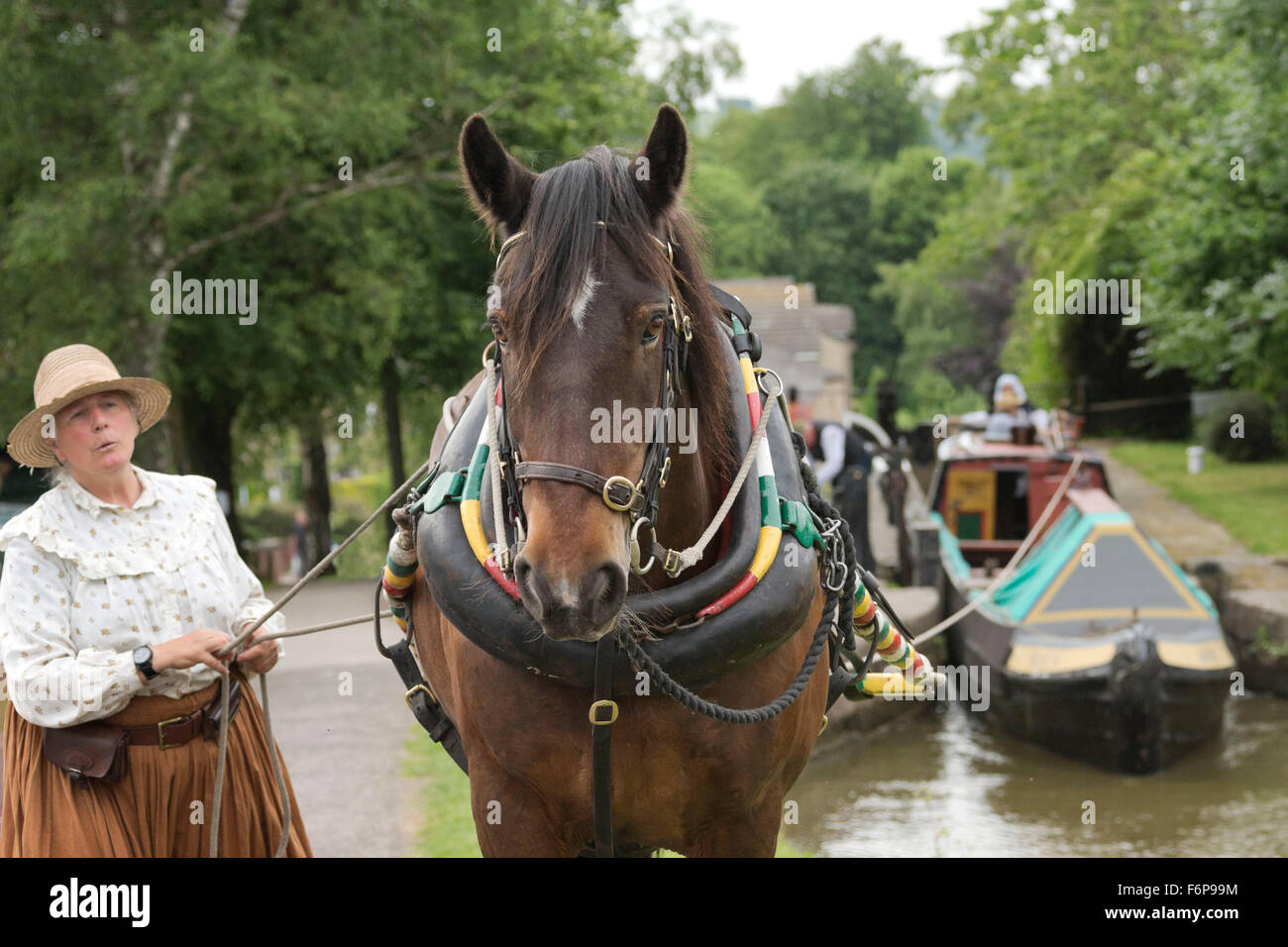 Boat Tow Stock Photos Images Alamy Harness Horse Canal England English Victorian Image