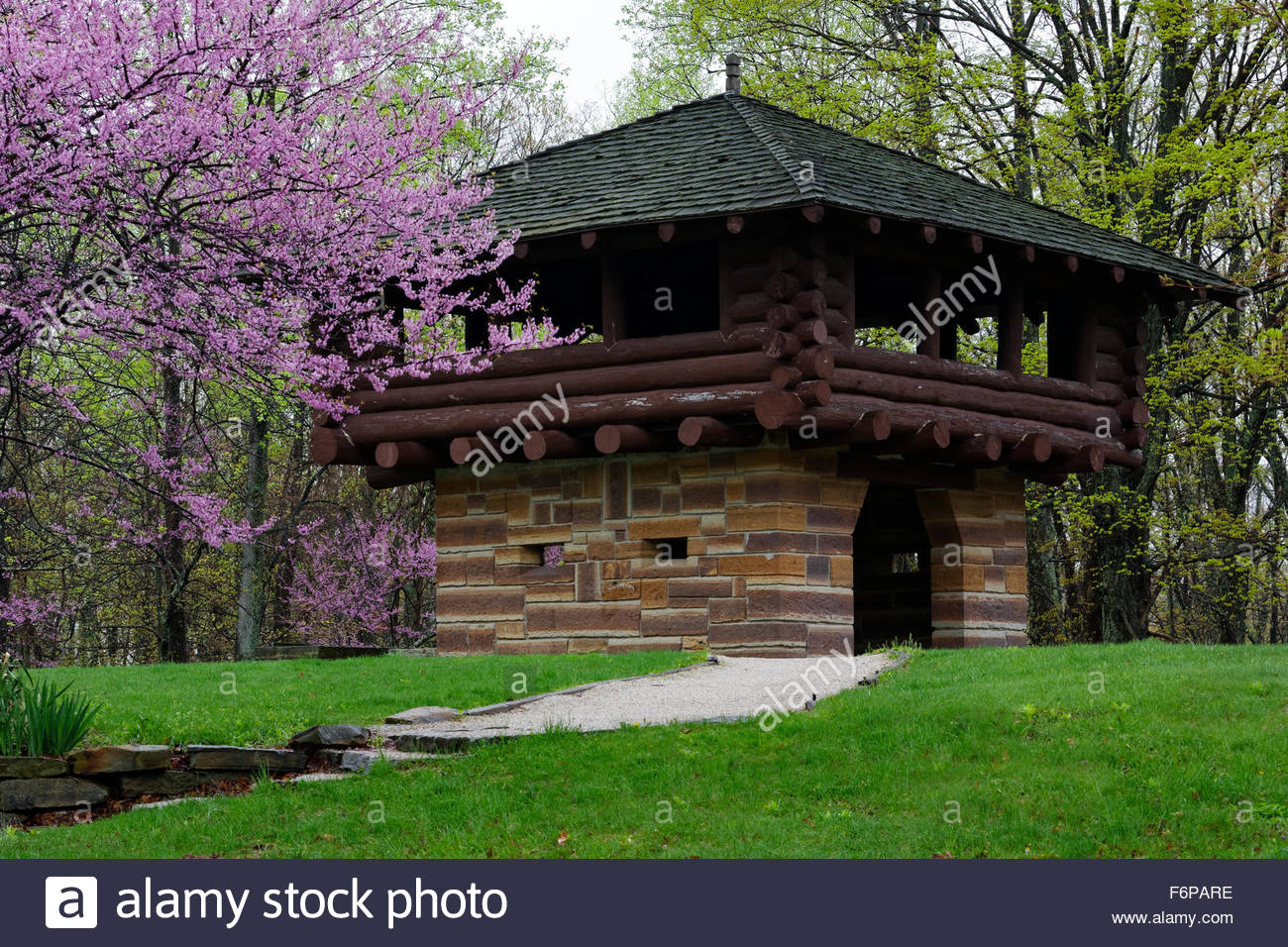West Gate Lookout Tower in spring time with Redbud Trees in bloom. Brown County State Park, Nashville, Indiana - Stock Image