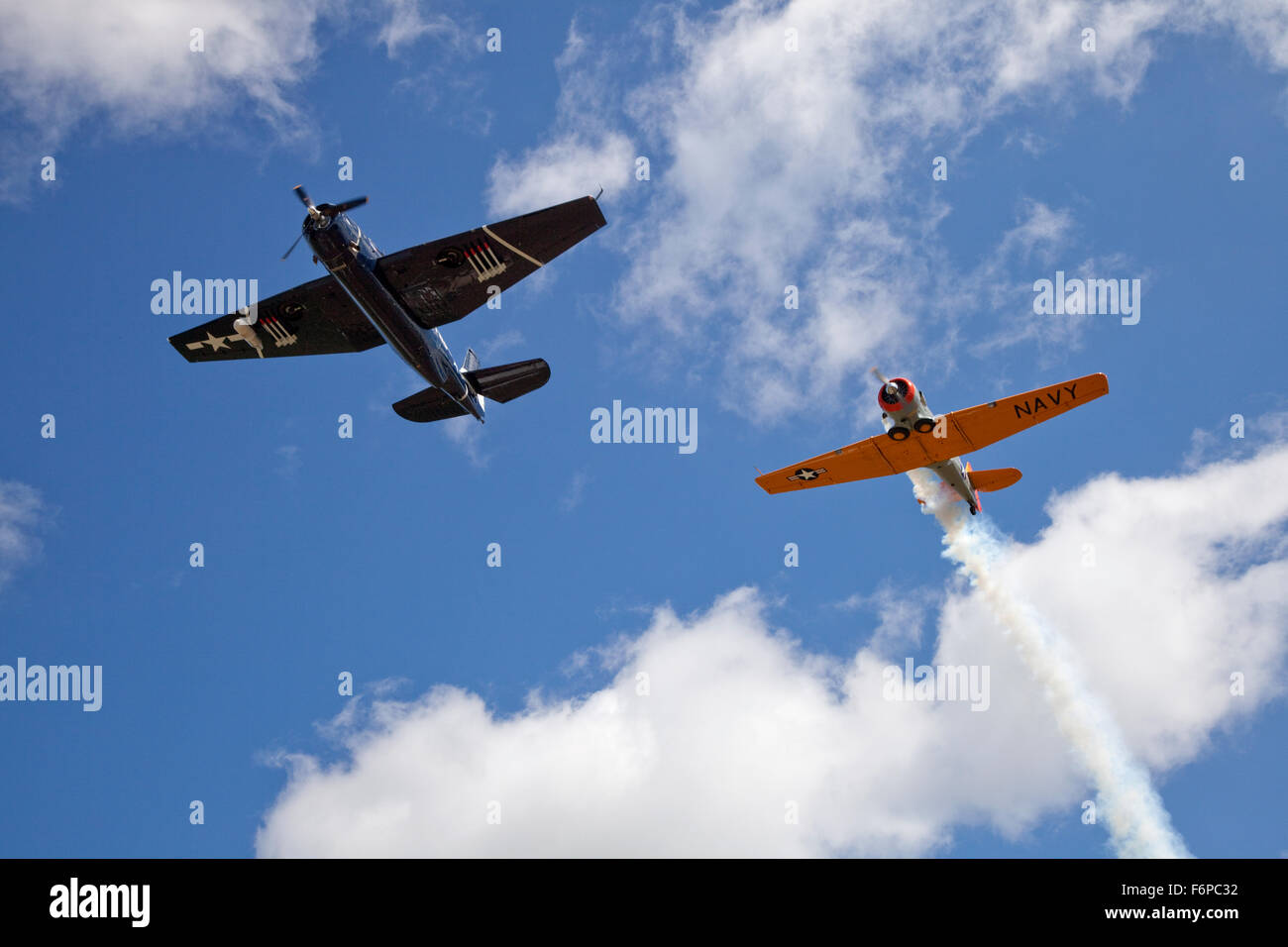Could be WWII Grumman TBF Avenger & North American T-6 Texan airplanes. Gathering of Airplanes, Battle Lake - Stock Image