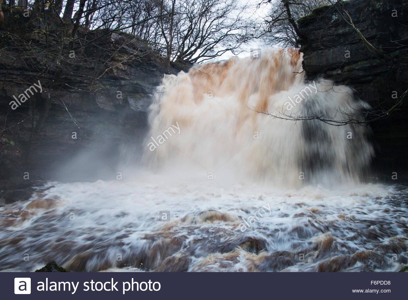 Summerhill Force Waterfall, Nr Bowlees, Co Durham, UK 18th November 2015. Heavy rain in the North Pennine Hills - Stock Image