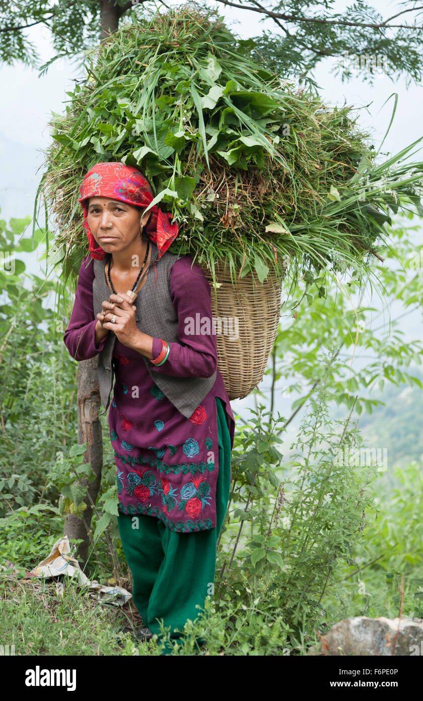 Indian woman road workers in traditional dress from the Himalayan region of Himachal Pradesh - Stock Image