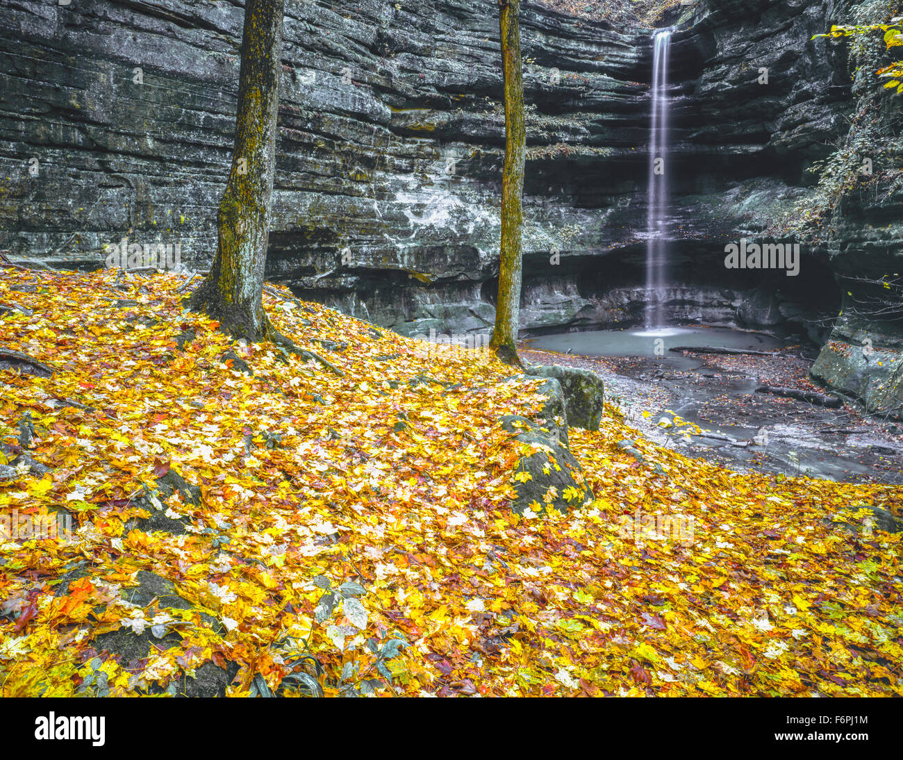 Starved Rock State Park, Illinois Near Illinois River - Stock Image