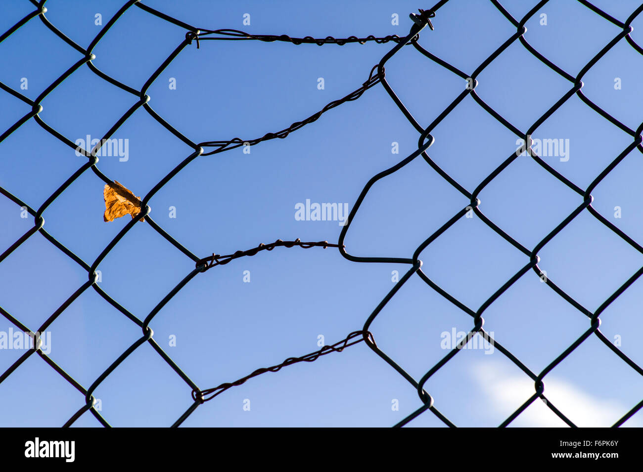Diamond Mesh Fence Stock Photos & Diamond Mesh Fence Stock Images