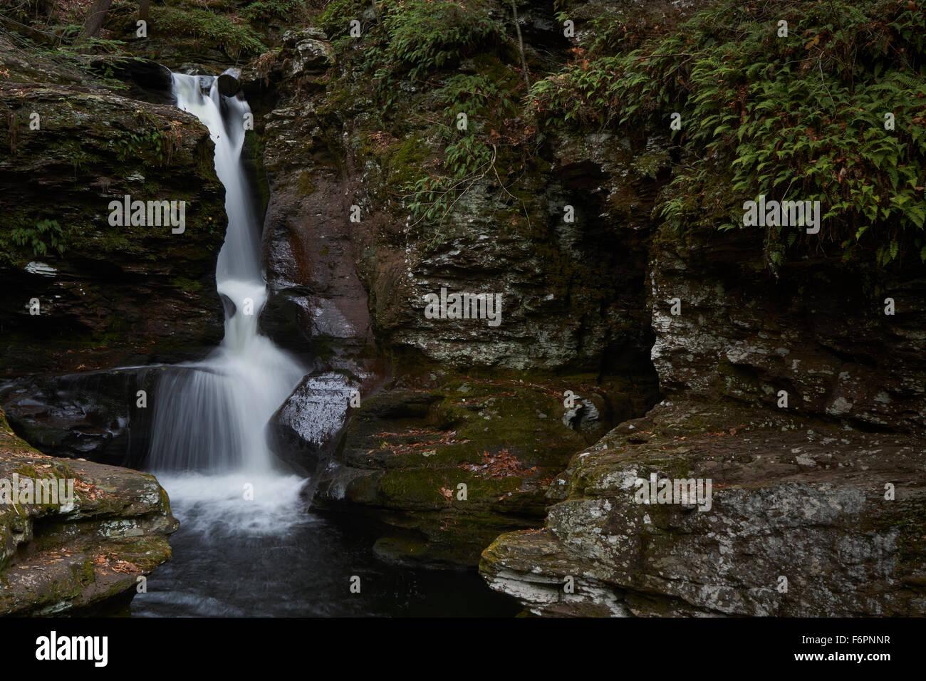 Adams Falls, Ricketts Glen State Park, Benton, Pennsylvania, USA Stock Photo