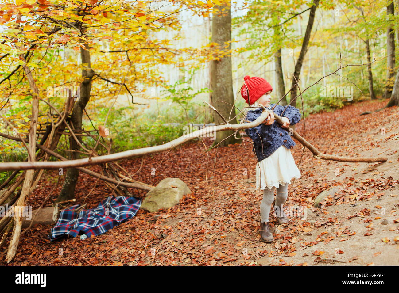 Girl carrying tree in forest Stock Photo