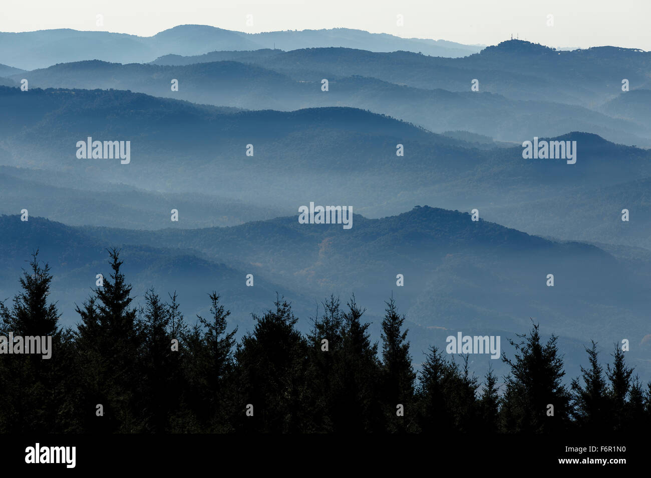 Forest and mountain in the fog. Montseny Natural Park. Barcelona. Cataluña. Spain. Europe - Stock Image