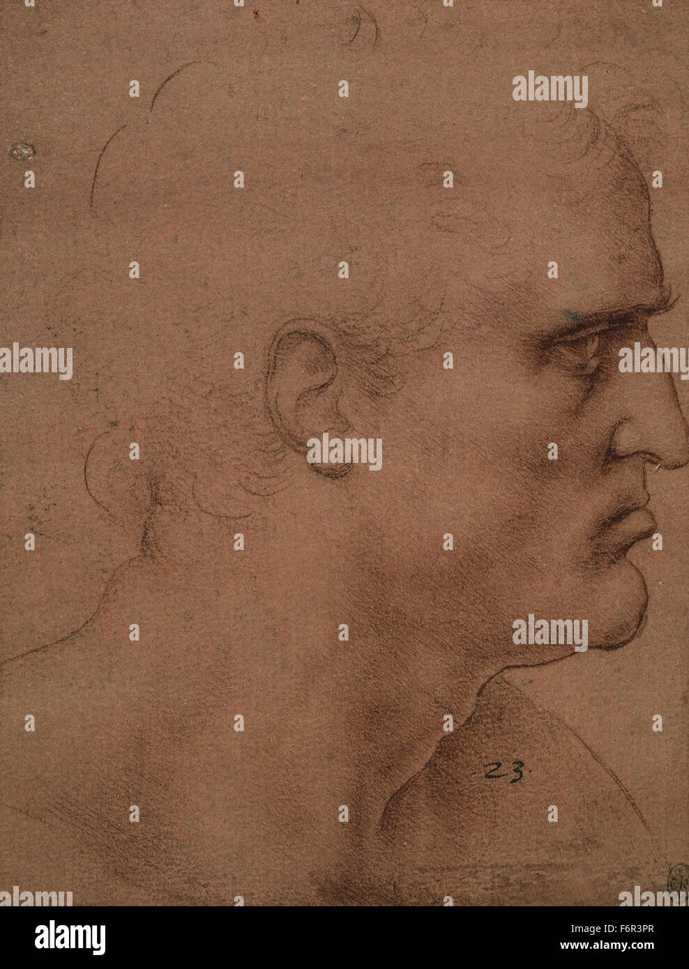 Leonardo da Vinci - - Stock Image