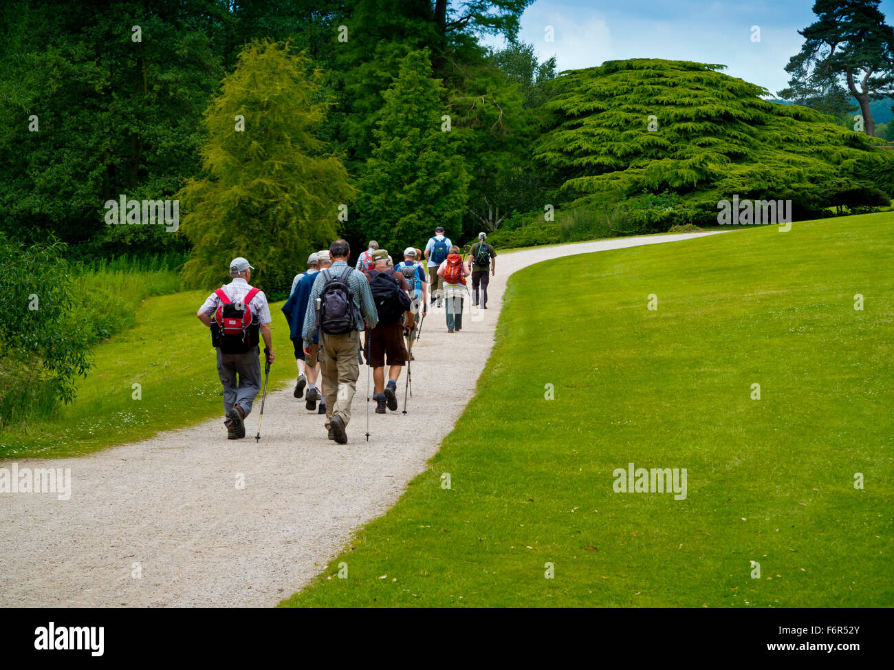 Group of hikers on an organised walk on a path through a country park in Nottinghamshire England UK - Stock Image