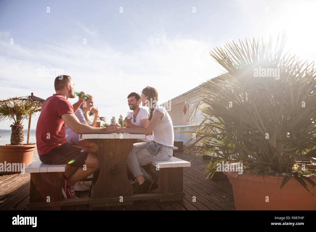 Group of friends celebrating in beach bar - Stock Image