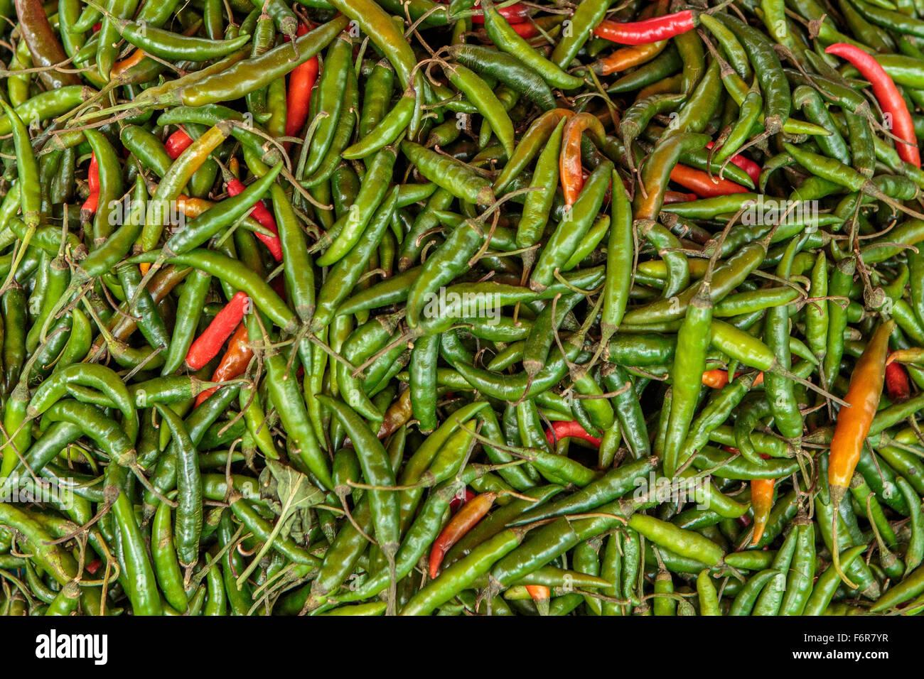 Chillies, Bhutan - Stock Image