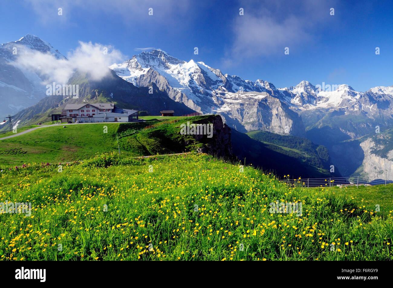 Alpine panorama above Berghaus Mannlichen and the Lauterbrunnen valley. - Stock Image