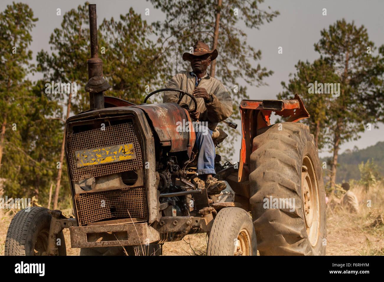 Massey Ferguson Tractor Stock Photos & Massey Ferguson