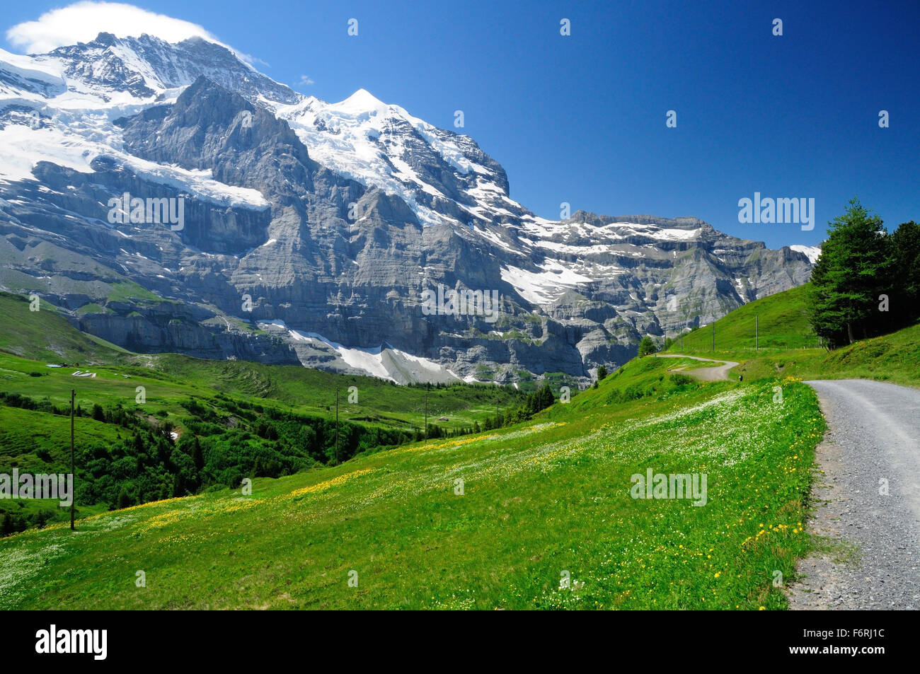 A dome shaped cloud covers the summit of the Jungfrau, seen from the mountain path from Kleine Scheidegg. - Stock Image