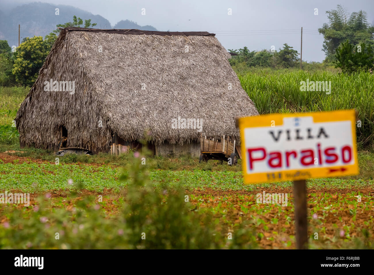 Sign to a private pension, Villa Paraiso, covered with leaves barn for drying tobacco leaves, Viñales, Cuba - Stock Image