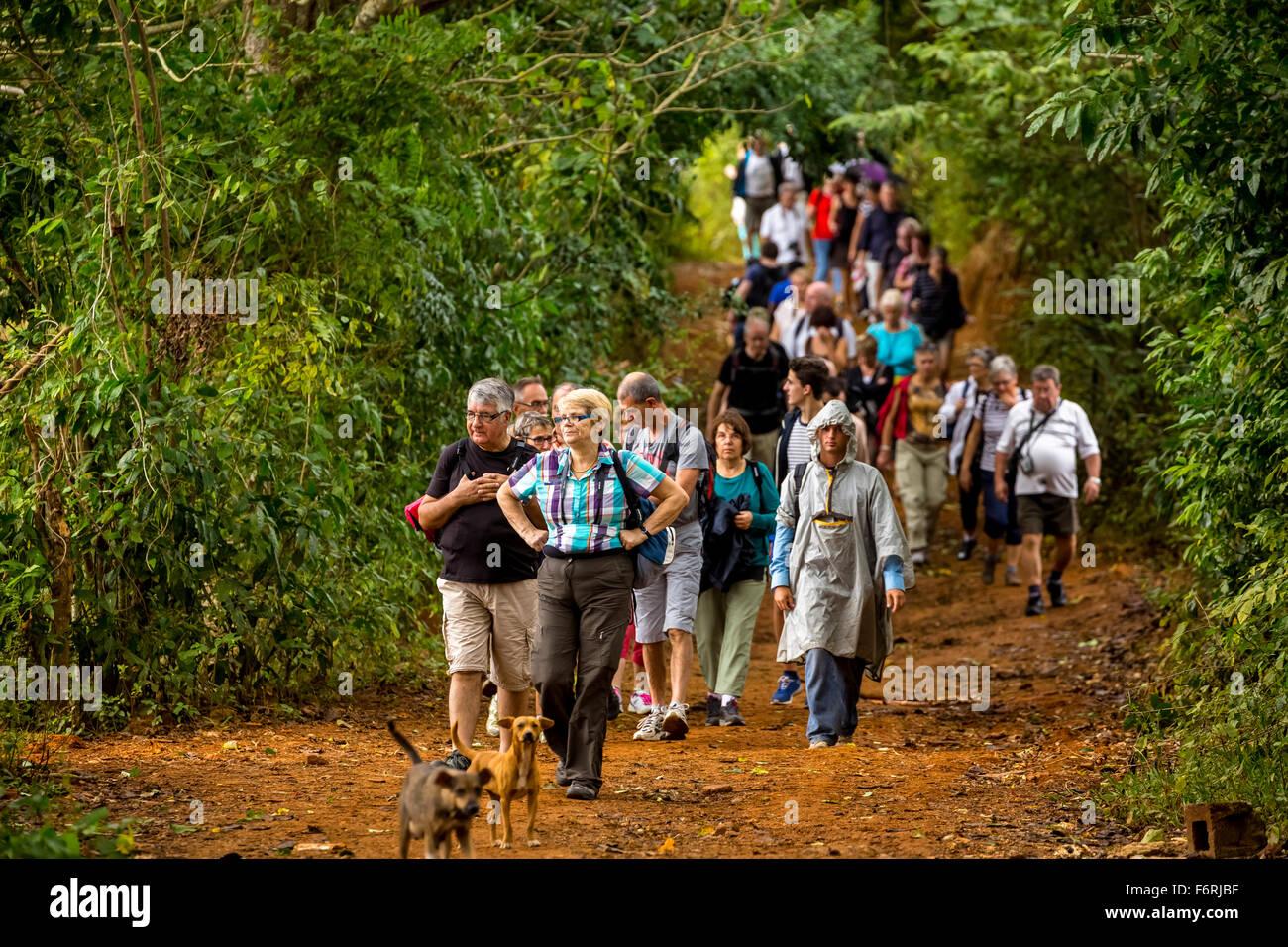 wandering tourists in Vinales, Vinales, Cuba, Pinar del Río, Cuba - Stock Image