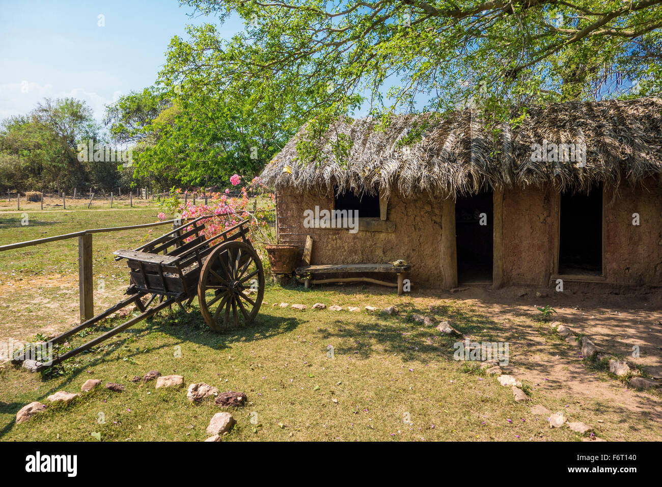 Historic re-creation of a rustic farmhouse with thatched roof and a wooden wagon with pink flowers in the Pantanal, - Stock Image