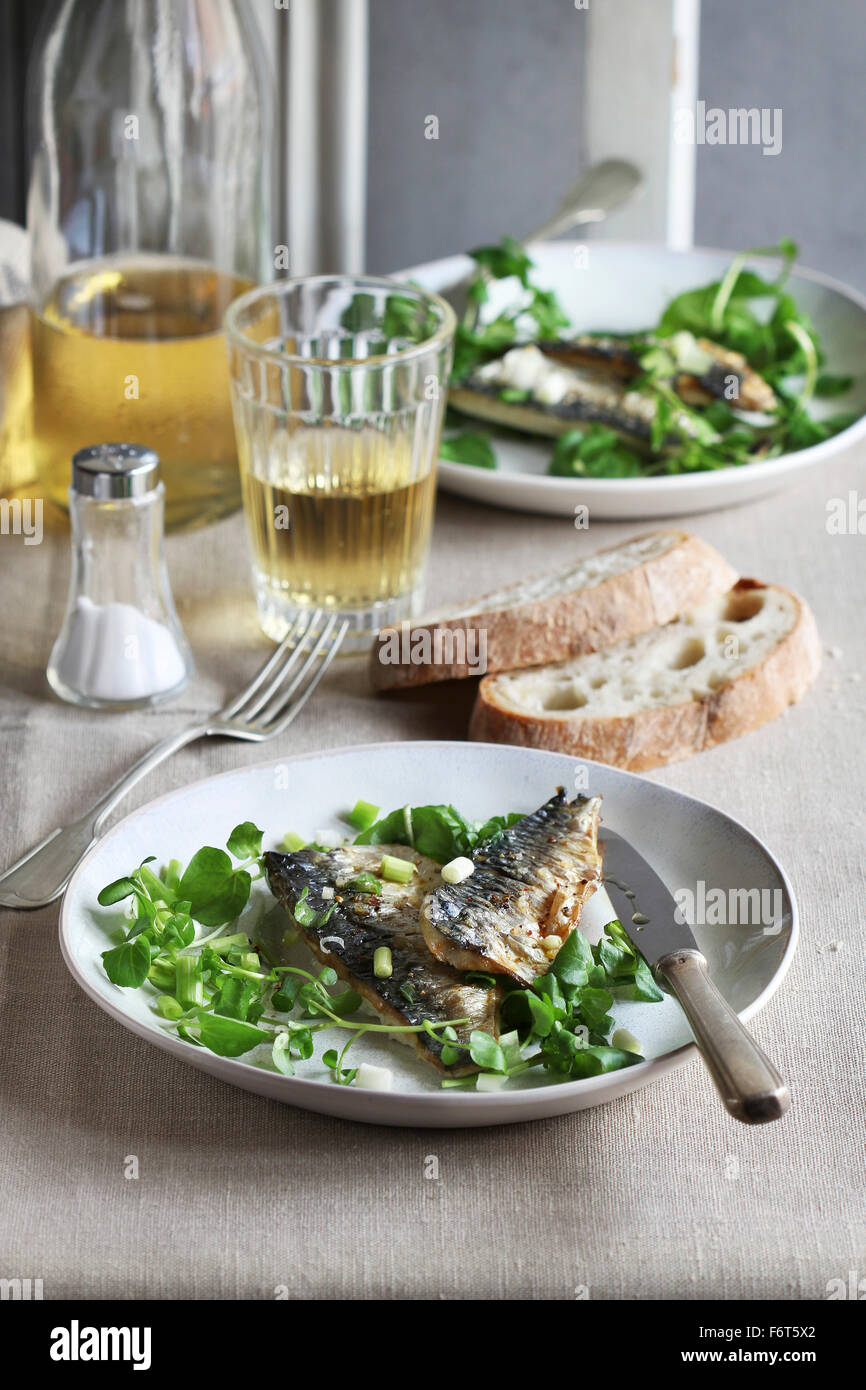 Two fillets of grilled mackerel fish on a plate with watercress salad and a glass of wine - Stock Image