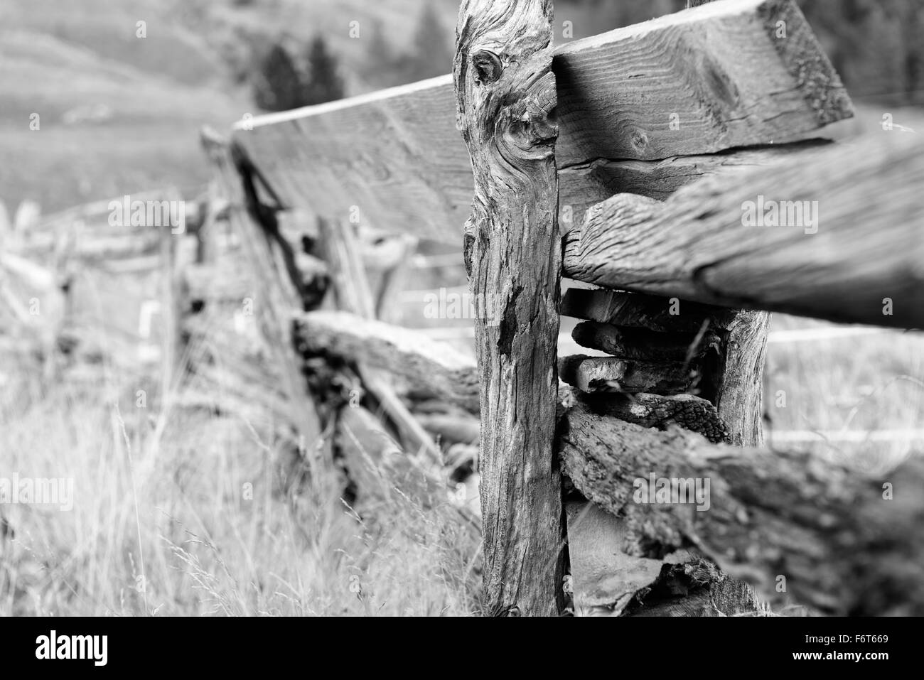 Holzzaun | wooden fence - Stock Image