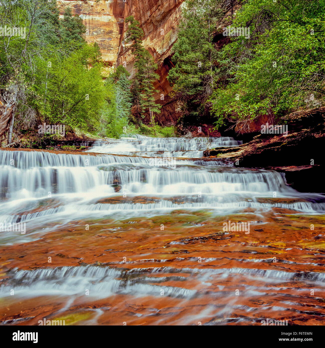 Places To Live Near Zion National Park: Archangel Cascades Stock Photos & Archangel Cascades Stock