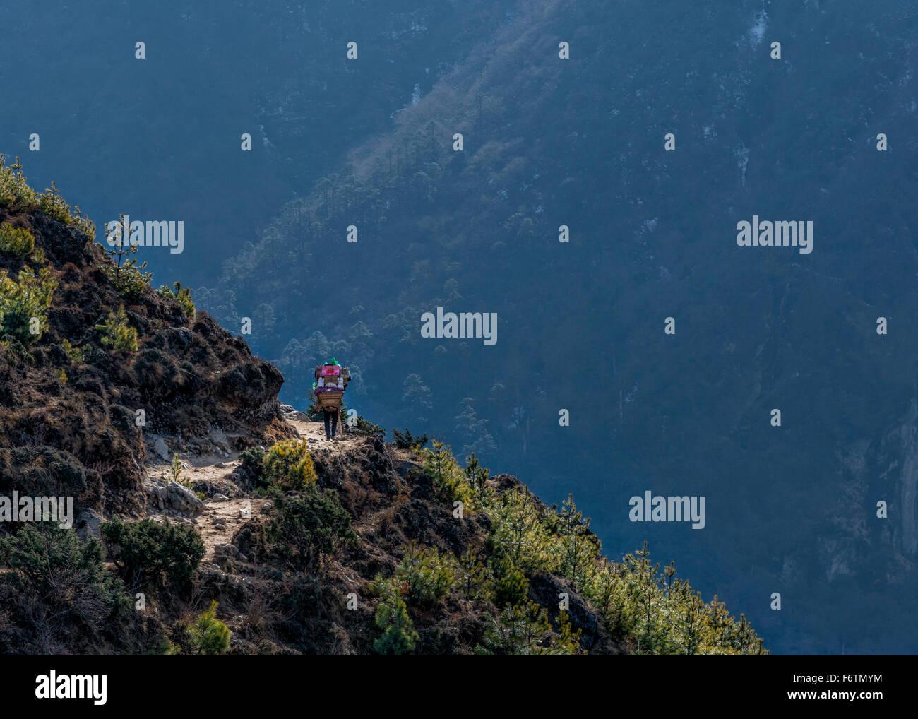 Nepal, Himalaya, Khumbu, trekker on hiking trail - Stock Image