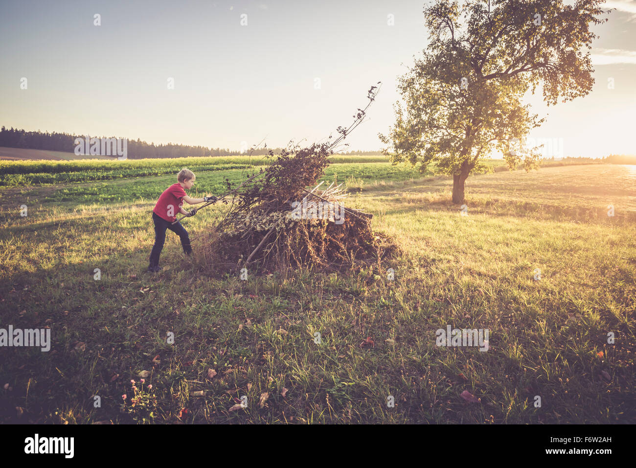 Boy preparing pile of twigs and leaves for a camp fire - Stock Image