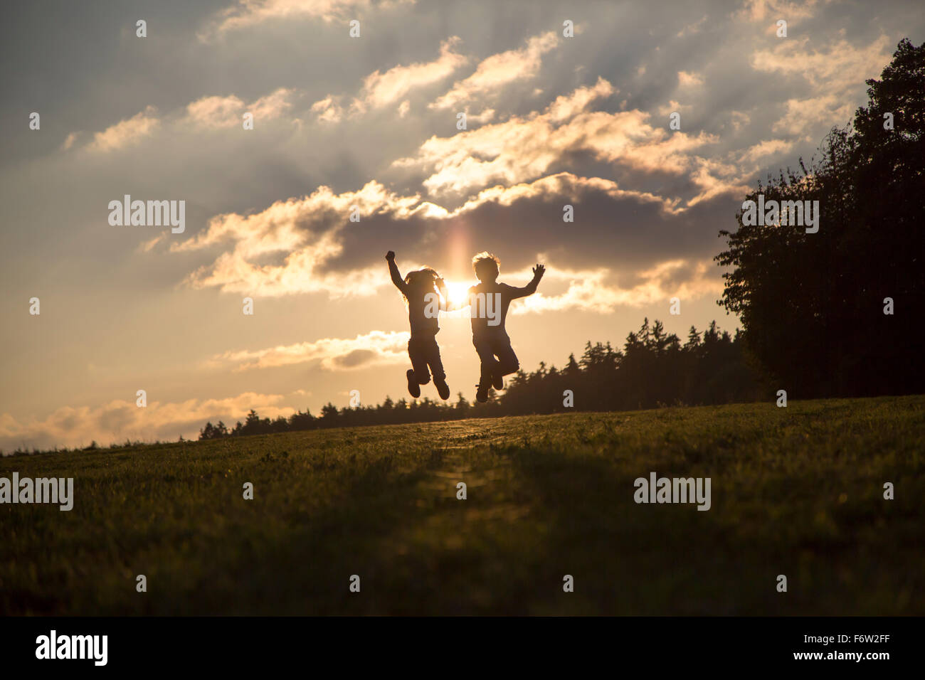 Silhouettes of two children jumping side by side on a meadow at backlight - Stock Image