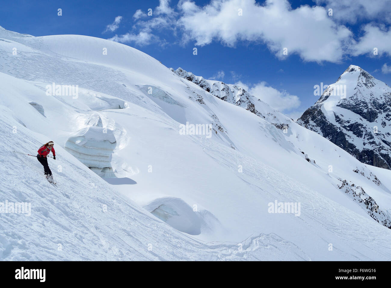 Female backcountry skier downhill skiing in front of Koenigspitze, Monte Cevedale, Ortler range, South Tyrol, Italy - Stock Image