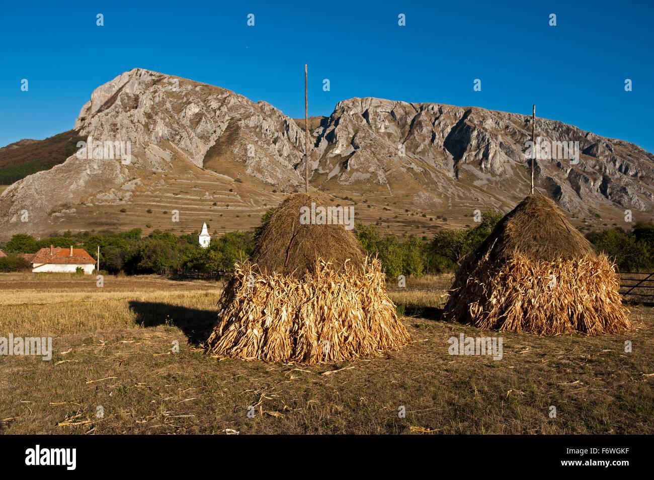 Hay stacks near the village of Rimetea, Alba, Transylvania, Romania - Stock Image