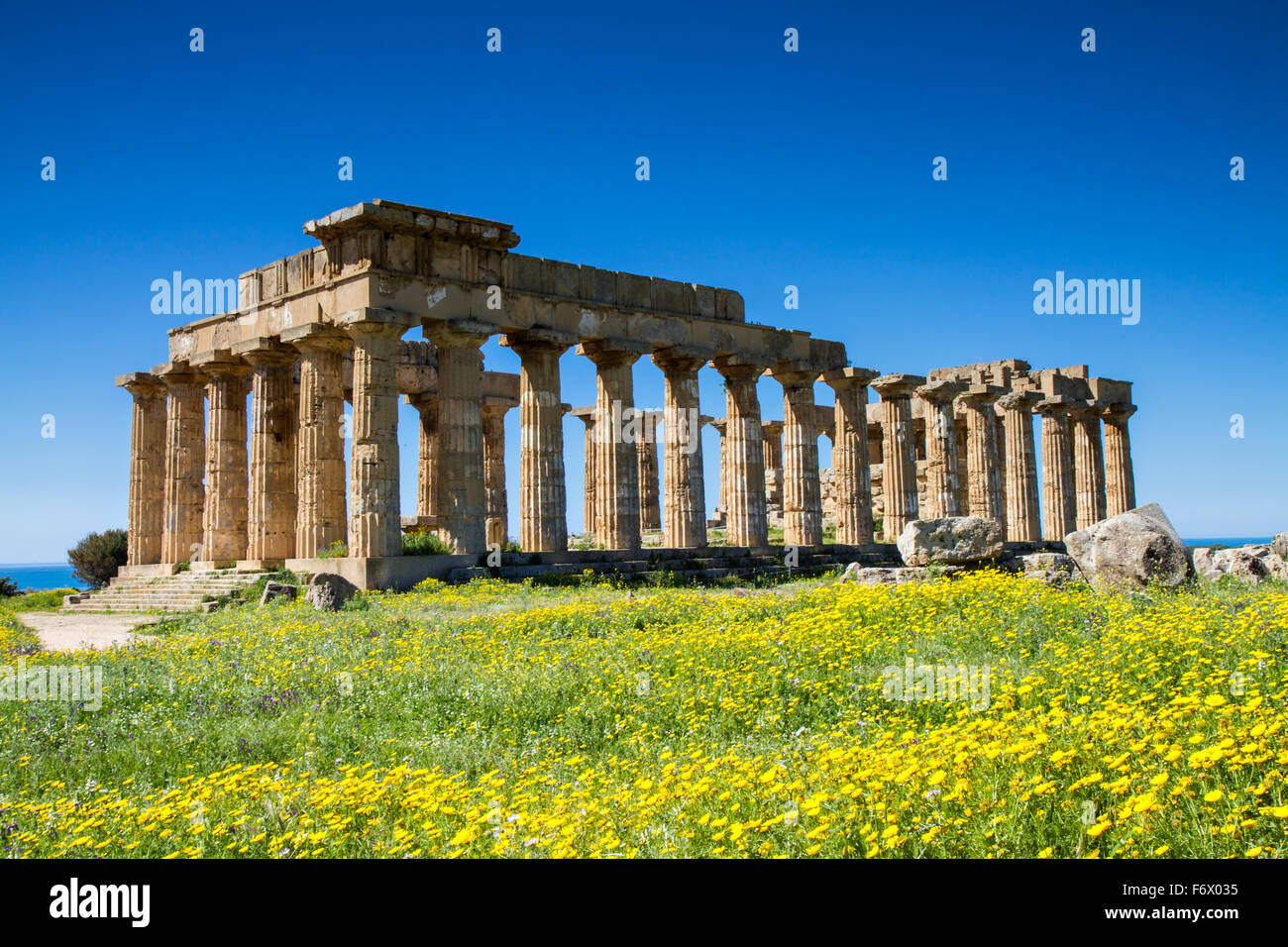 Greek Temple at Selinunte in spring, Sicily, Italy - Stock Image