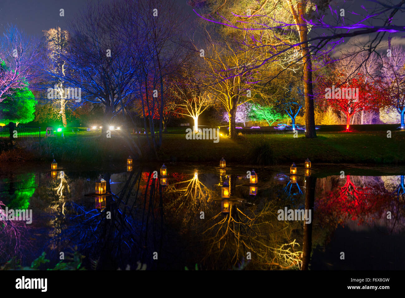 Brentford, London, UK. 20th Nov, 2015. The Enchanted Woodland returns to Syon Park and House in Brentford on November Stock Photo