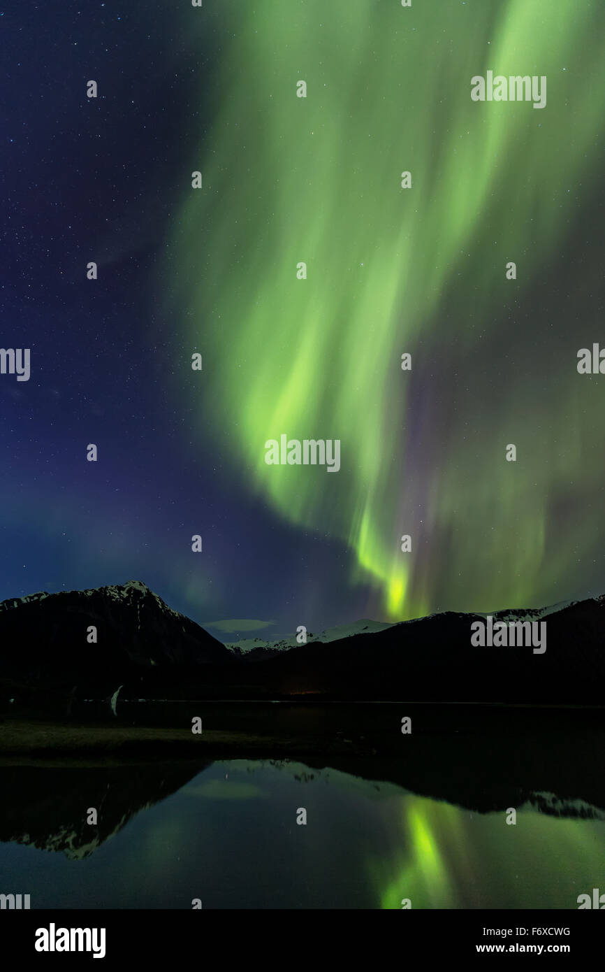 Aurora Borealis, Northern Lights, Mendenhall Lake, Tongass National Forest; Alaska, United States of America - Stock Image