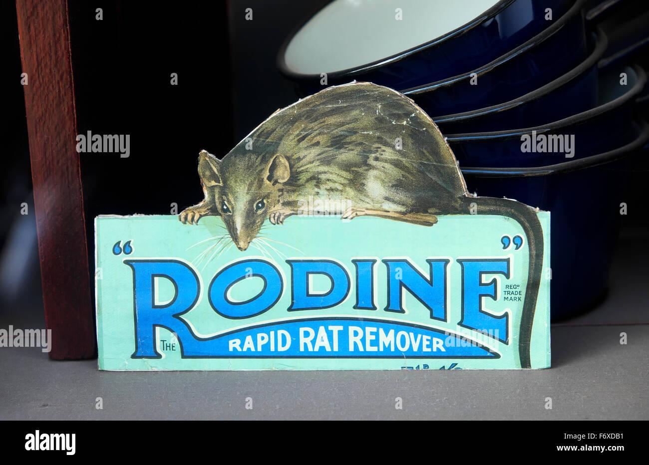 Rodine Rat Remover vintage rat poison advertisement Great Britain  KATHY DEWITT - Stock Image